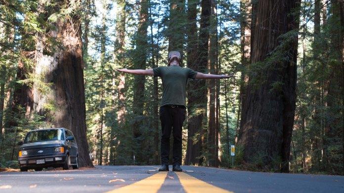 Redwoods-9